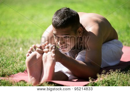Indian Yogi In Park