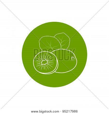 Icon Kiwifruit In The Contours