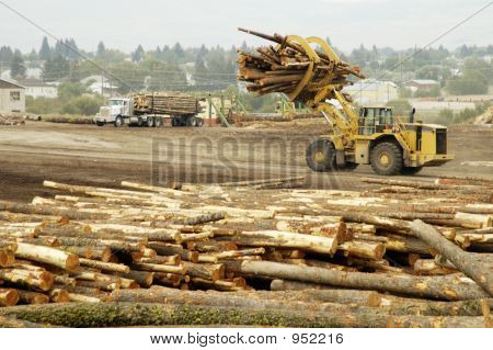 Logging Equipment