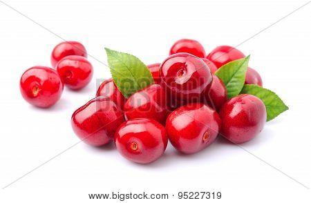 Black Cherries Fruit