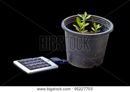 Environmental Concept: Usb Numeric Keyboard Connected To Potted Plants. Isolated On Black Background