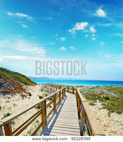 Wooden Boardwalk In Capo Testa On A Clear Day