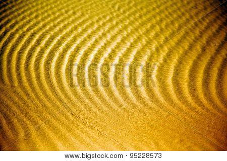 Africa Brown     Sahara Morocco Desert Line