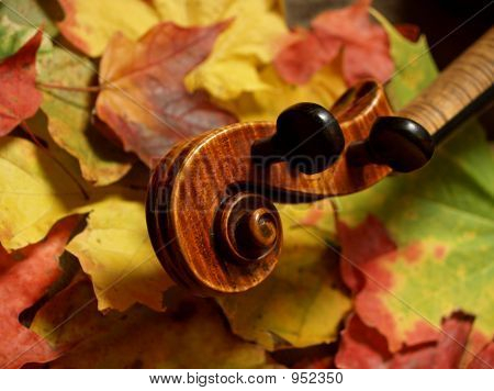 Neck & Scroll - Violin In Autumn Leaves