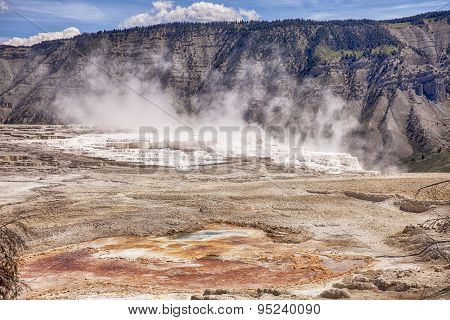 Canary Springs At Mammoth Hot Springs