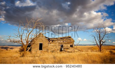 Abandoned Homesteader Cabin In Eastern Washington