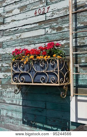 Planter box on aged blue wall