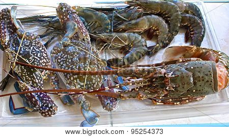 Fresh Large Shrimp, Crabs And Lobster
