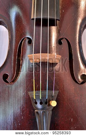 Antique Violin Closeup Against White