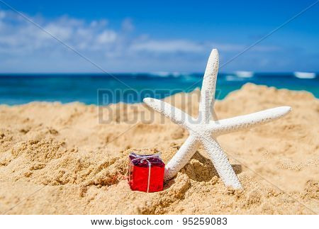 Starfish With Gift On The Sandy Beach