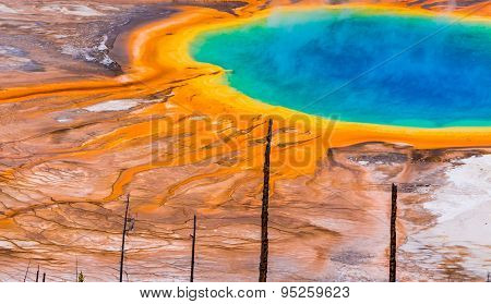 Panorama view of Yellowstone's grand prismatic spring