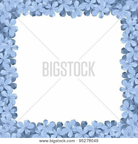 Background frame with blue plumbago flowers. Vector illustration.