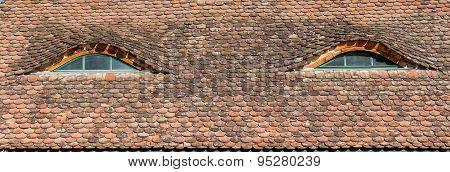 Transylvanian Saxon Rooftop