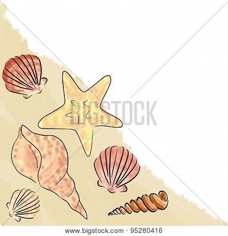 shell sand corner