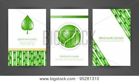 Set of brochures with leaves