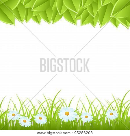 template with leaves and grass