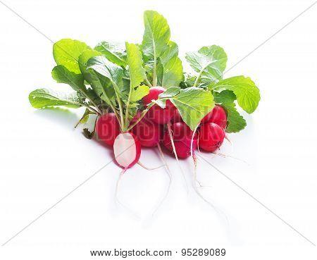 radishes on white background