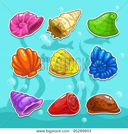 Shells Set