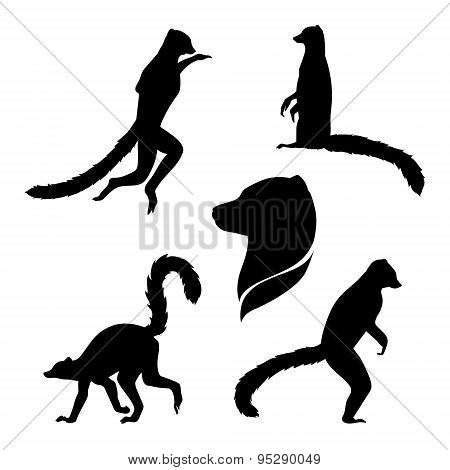 Vector silhouettes of a lemur.