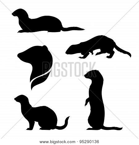 Vector silhouettes of a ferret.