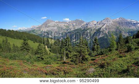 Summer Landscape Near Gstaad
