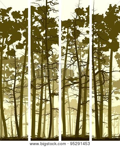 Vertical Banners Of Coniferous Wood.