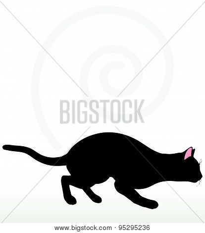 Cat Silhouette In Stalking Pose