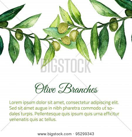 Vector Watercolor Hand Drawn Olive Branch Background With Green Leaves.