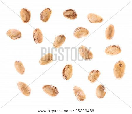 Multiple pistachio shells isolated