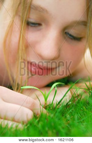 Girl And Seedling