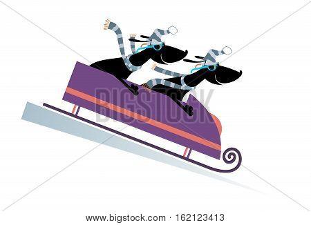 Dog bobsledding. Two cartoon dachshunds ride on sledge