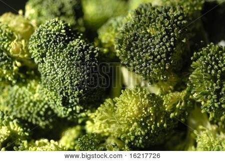 Close up of Broccoli 2