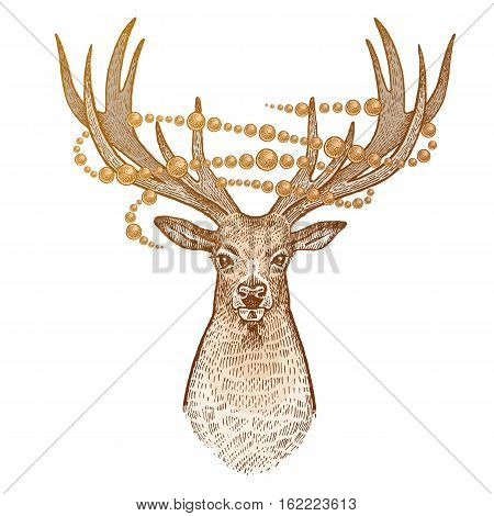 Deer isolated on white background. Head of reindeer with big horns full face and sparkling garland. Festive decoration. Animal symbol of Christmas. Print gold foil. Vector art illustration. Vintage
