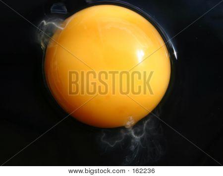 Extreme Eggs Series