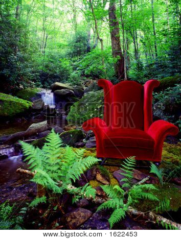 Chair In Forest
