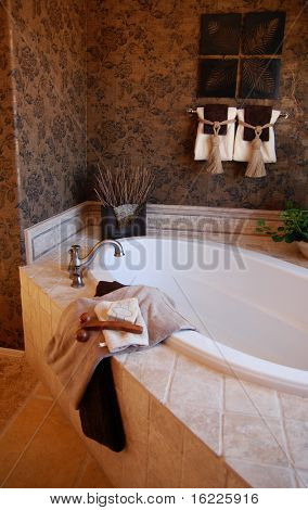 Bathroom in showcase home