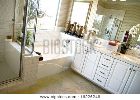 Beautiful home bathroom