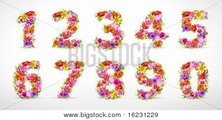 numbers, vector colorful flower font
