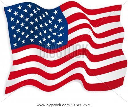 American flag. Vector