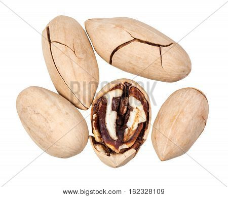 Top View Of Few Pecans In Shell Isolated On White