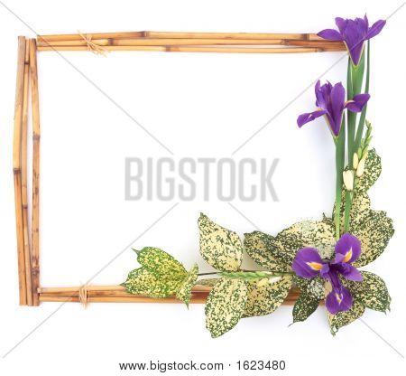 Flower Frame-2