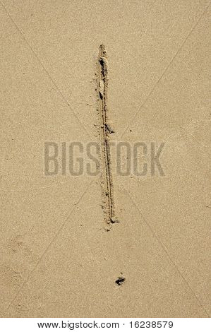 ! in the sand