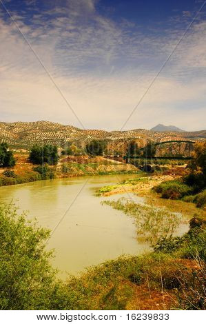 genil river in andalusia,spain