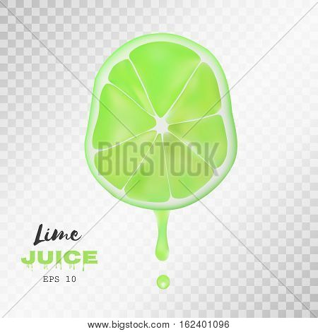 Vector realistic sliced lime with drop of juice. Juicy fruit presentations postcards cards brochures and banners , Poster banner print advertisement design object on light grey transparent background.