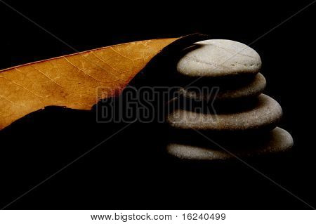stones and leaf