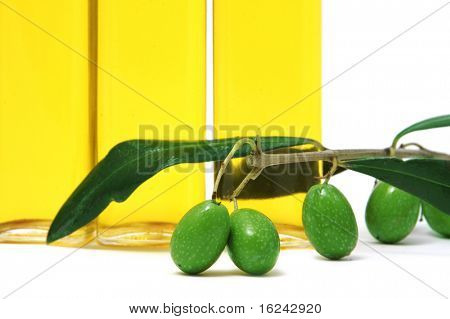 bottle of oil olive  on a white background