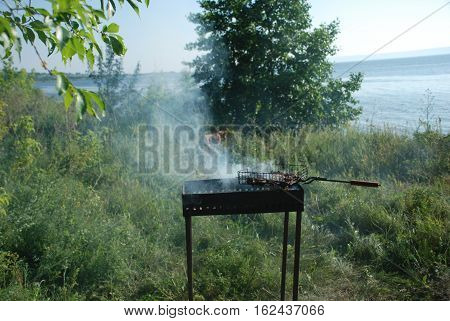 Summer nature is preparing barbecue grill foto