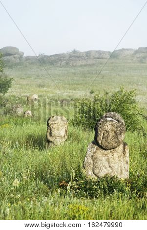 Stone Idol In The Steppe. National Park