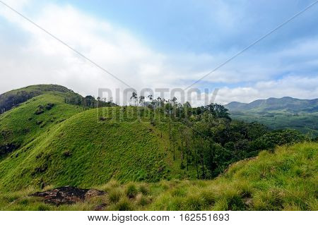 Trekking around Munnar tea estate hills in Kerala Idukki district India