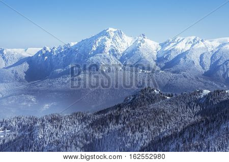 Winter Landscape Of The Carpathian Mountains And Forests Covered By Snow On A Clear Blue Sky Backgro